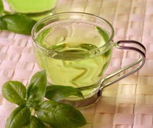 Oregano-Tea