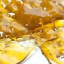 shatter weed