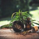 Is CBD Oil Safe And What Makes CBD Effective